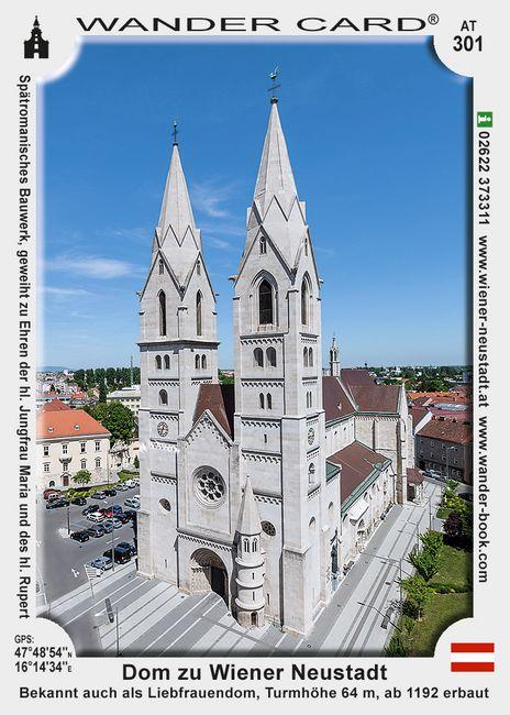 Dom zu Wiener Neustadt