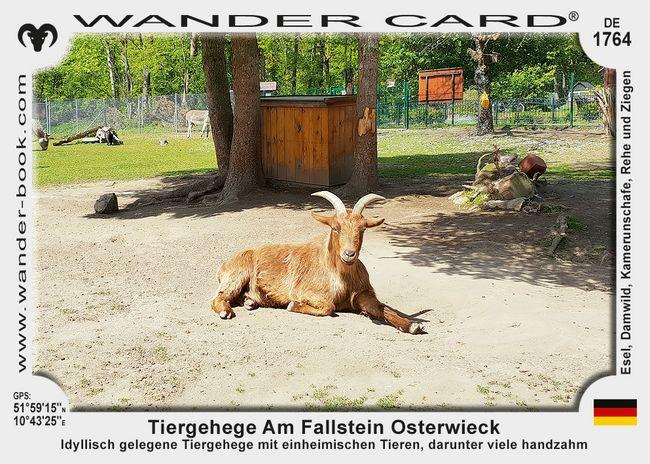 Tiergehege Am Fallstein Osterwieck
