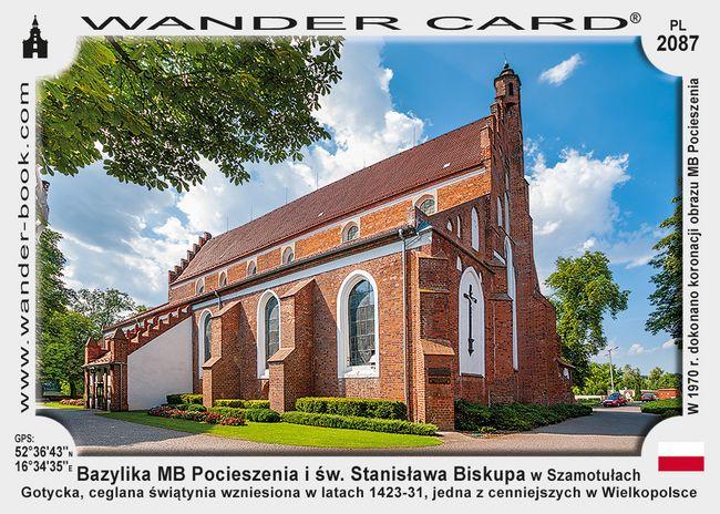 Bazylika kolegiacka Matki Bożej Pocieszenia i św. Stanisława Biskupa w Szamotułach