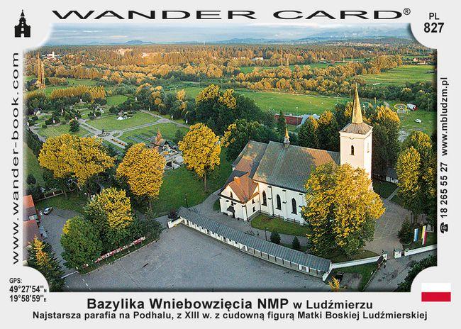 Bazylika Wniebowzięcia Najświętszej Marii Panny w Ludźmierzu