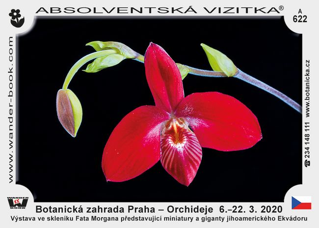 Botanická zahrada Praha – Orchideje  6.–22. 3. 2020