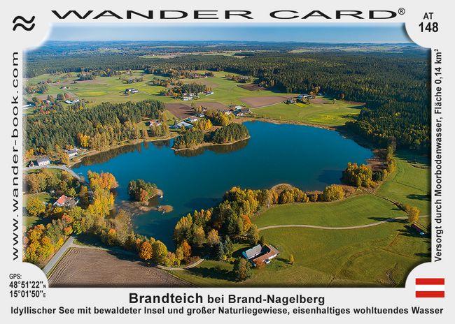 Brandteich bei Brand-Nagelberg