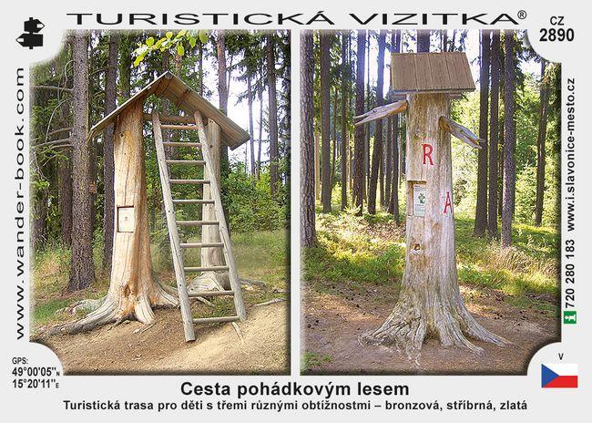 Cesta pohádkovým lesem