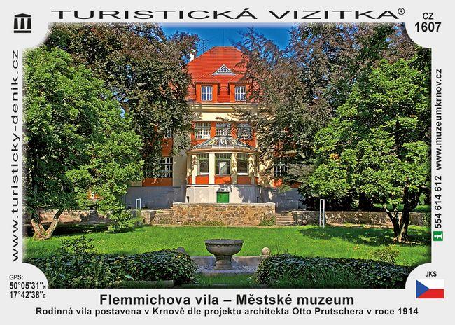 Flemmichova vila - Městské muzeum