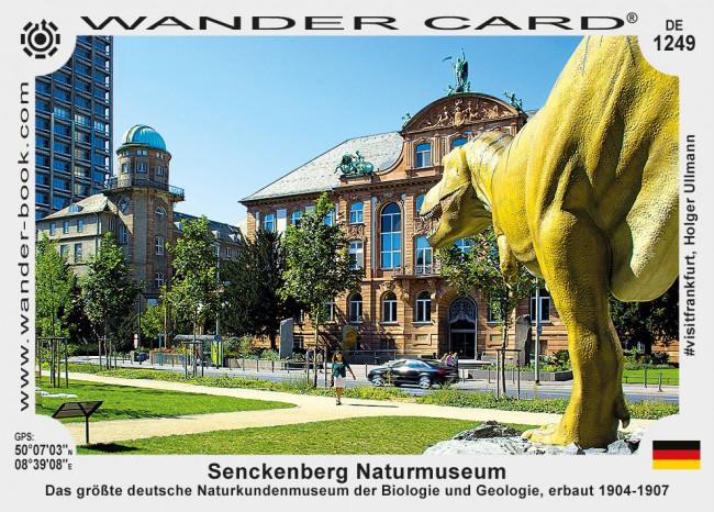 Senckenberg Naturmuseum