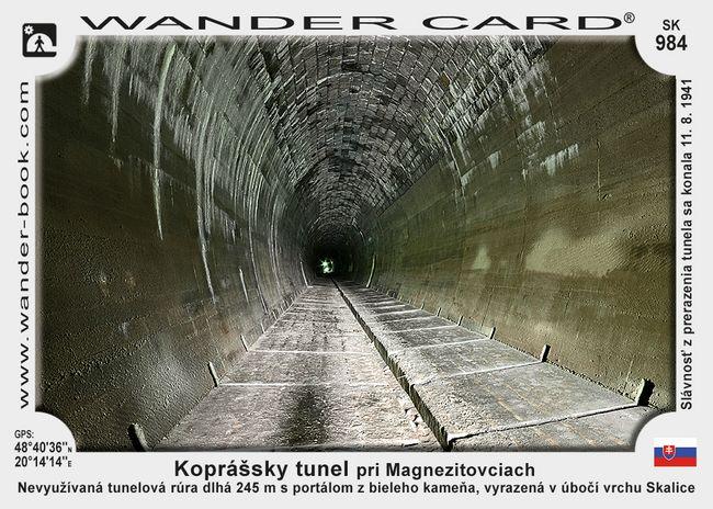 Koprášsky tunel pri Magnezitovciach