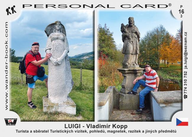 Vladimír Kopp – LUIGI