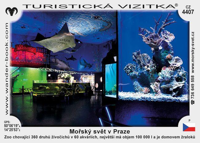 Mořský svět v Praze