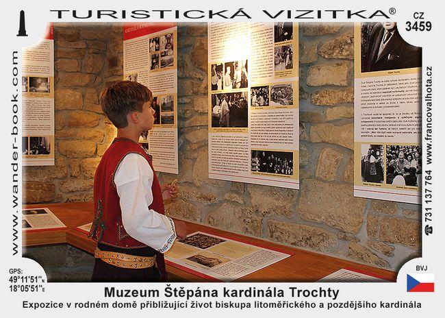 Muzeum Štěpána kardinála Trochty