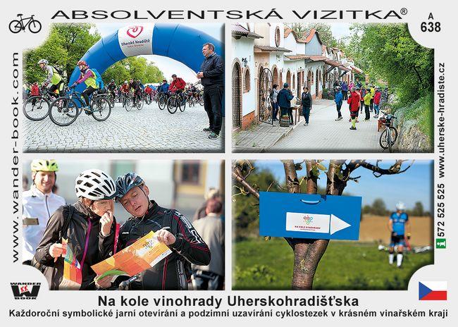 Na kole vinohrady Uhersko hradišťska