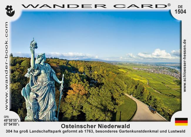 Osteinscher Niederwald