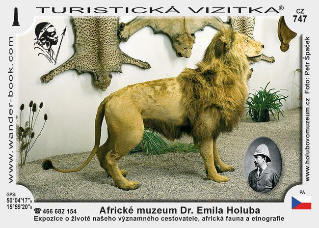 Památník Dr. Emila Holuba v Holicích