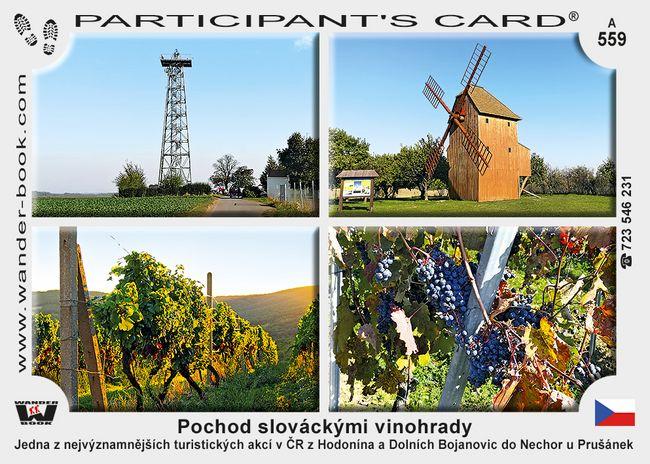 Pochod slováckými vinohrady