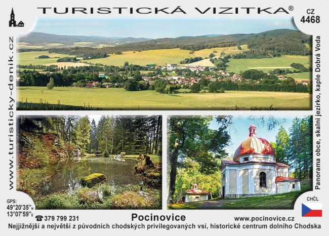 Pocinovice