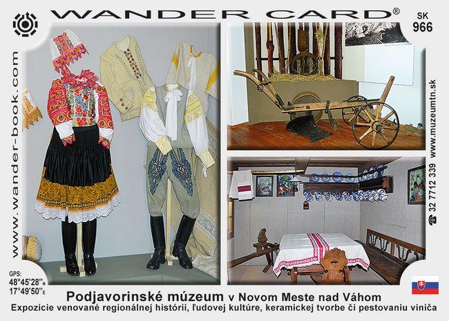 Podjavorinské múzeum v Novom Meste nad Váhom