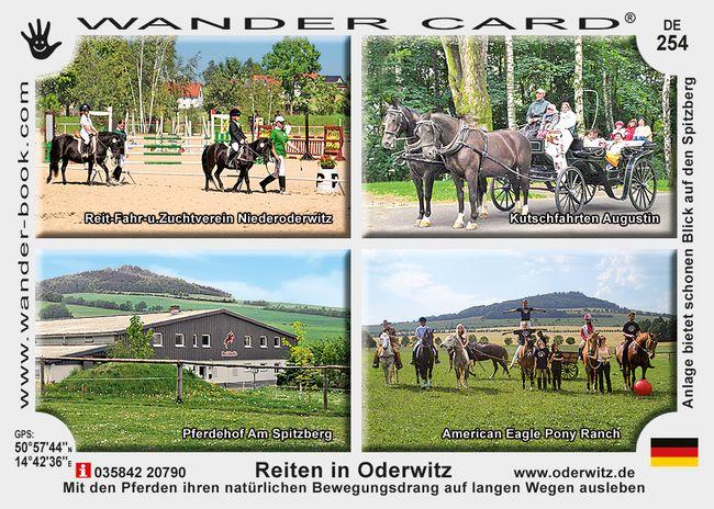 Reiten in Oderwitz