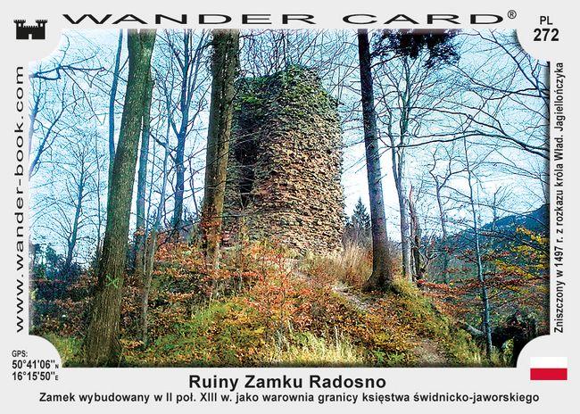Ruiny Zamku Radosno