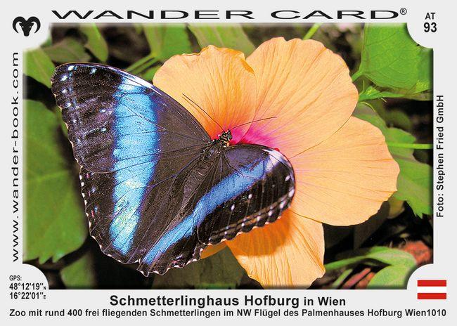 Schmetterlinghaus Hofburg in Wien