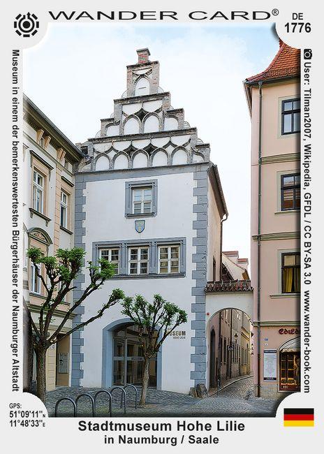 Stadtmuseum Hohe Lilie in Naumburg / Saale