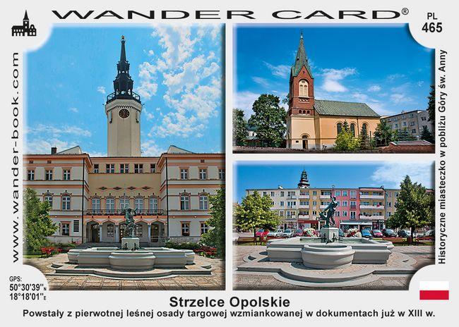 Strzelce Opolskie miasto