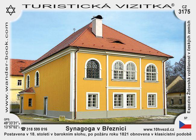 Synagoga v Březnici