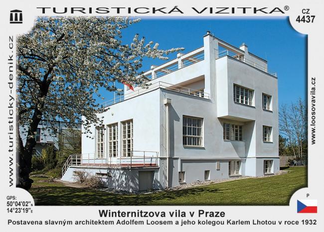 Winternitzova vila