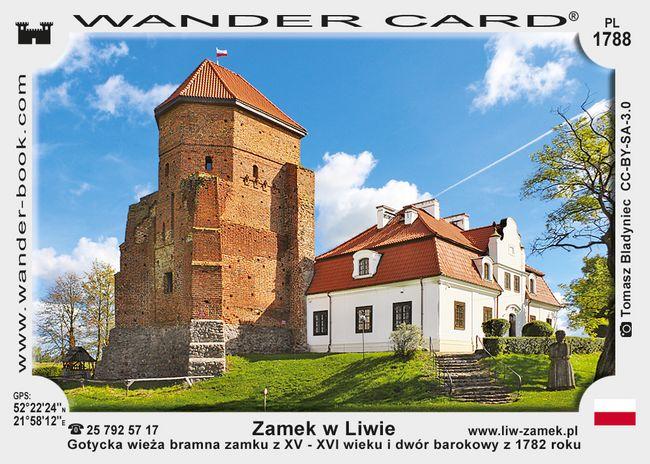 Zamek w Liwie