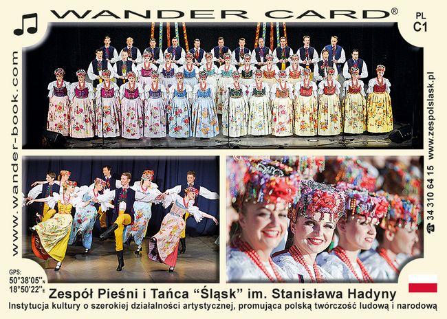 """Zespół Pieśni i Tańca """"Śląsk"""" im. Stanisława Hadyny"""