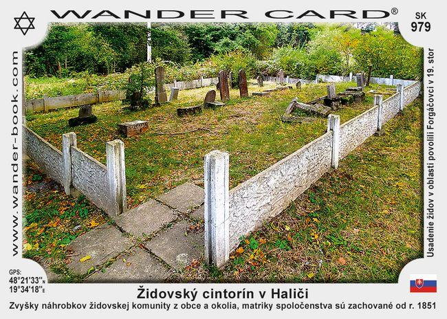 Židovský cintorín v Haliči