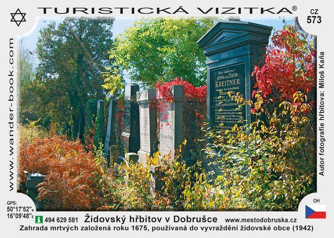 Židovský hřbitov v Dobrušce