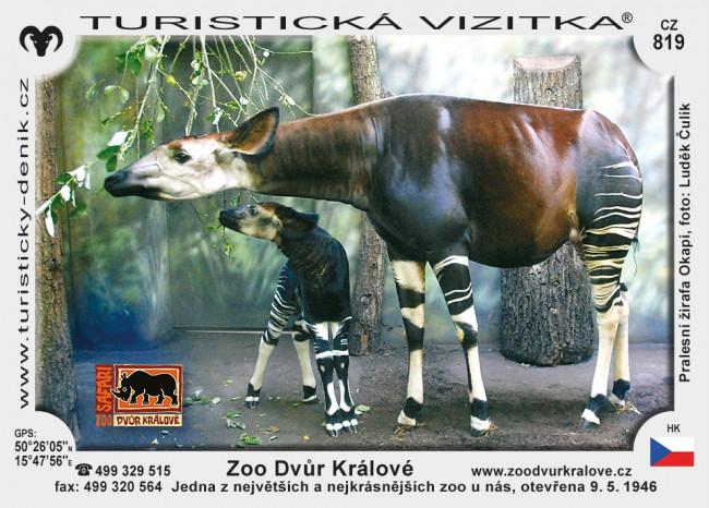 Zoo Dvůr Králové nad Labem
