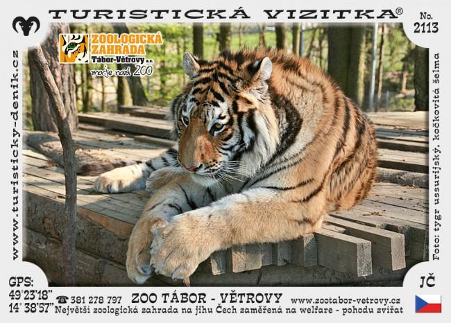 Zoo Tábor
