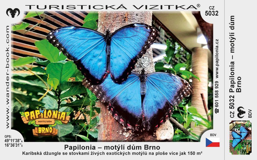 Papilonia – motýlí dům Brno