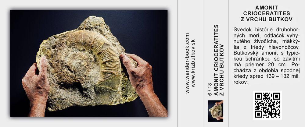 Amonit Crioceratites z vrchu Butkov