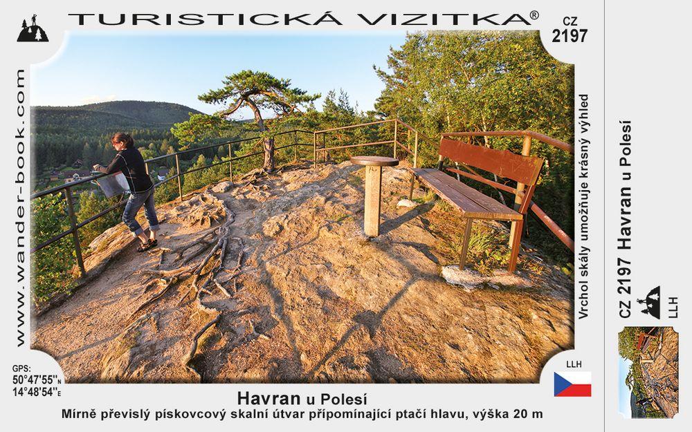 Havran u Polesí