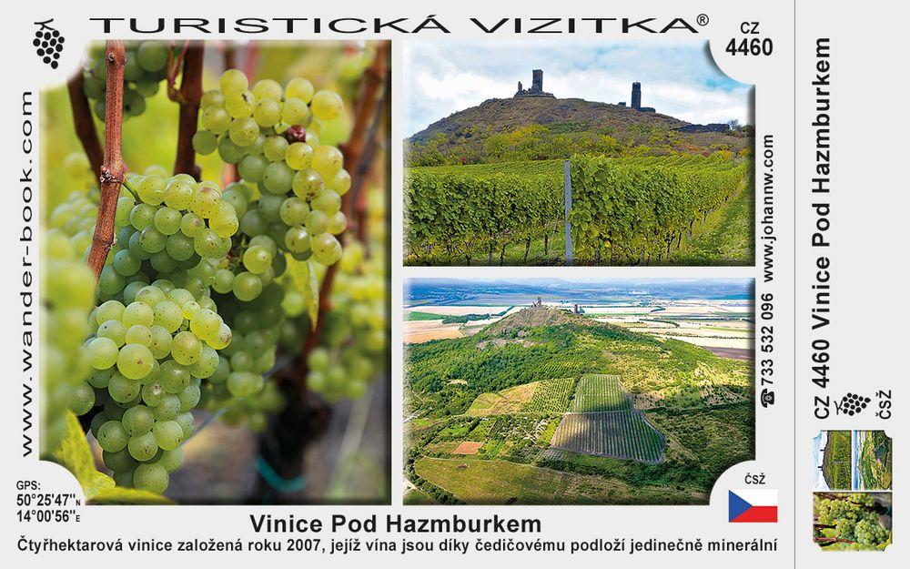 Hazmburk vinice