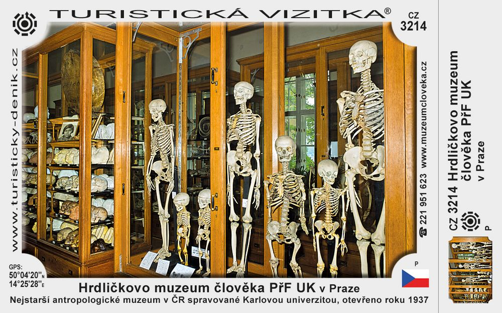 Hrdličk. muz. člověka v Praze