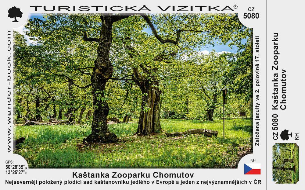 Kaštanka Zooparku Chomutov
