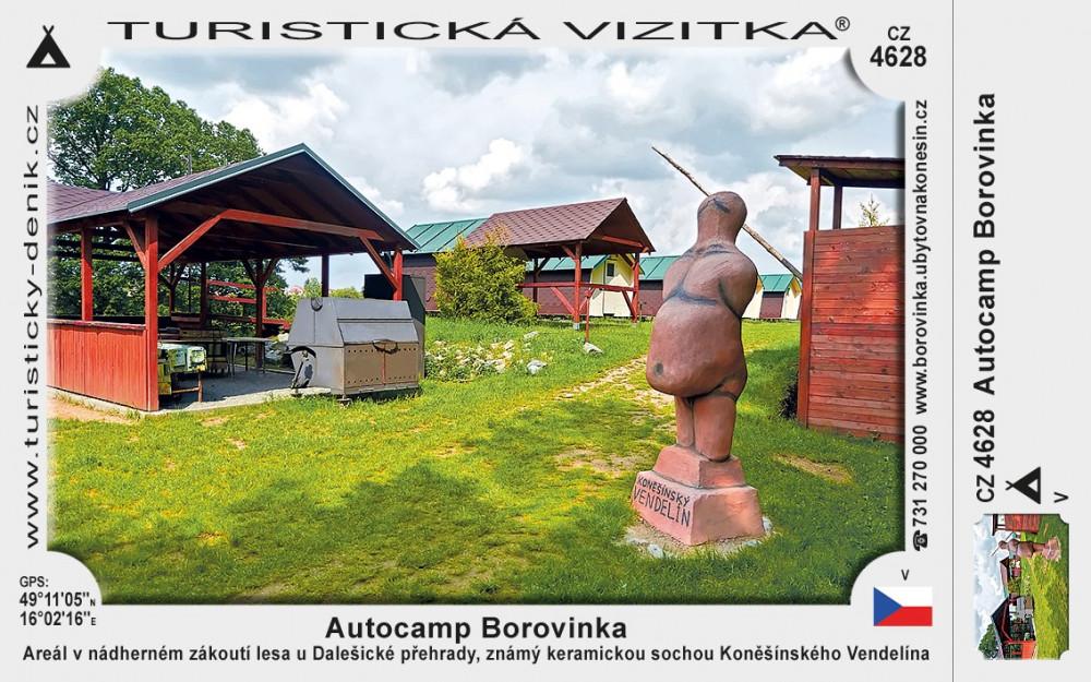 Konešín kemp Borovinka