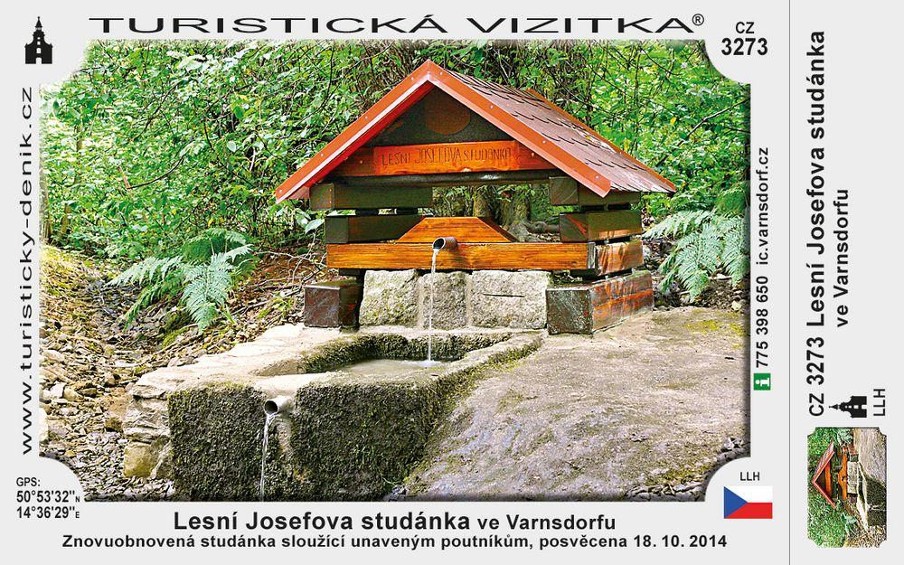 Lesní Josefova studánka ve Varnsdorfu