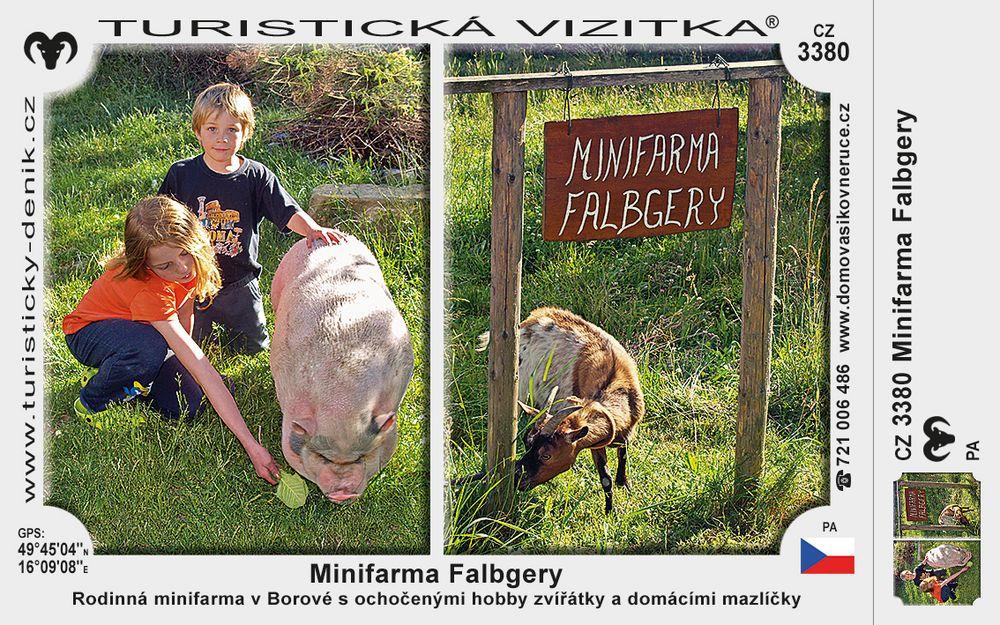 Minifarma Falbgery