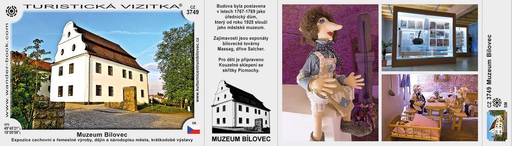 Muzeum Bílovec D