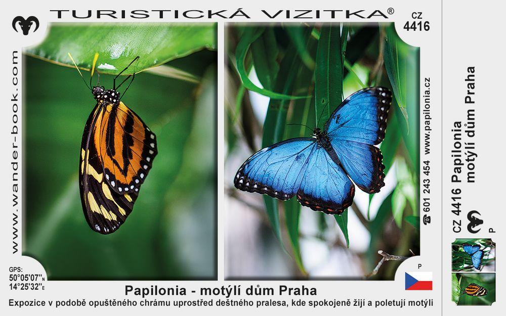 Papilonia - motýlí dům Praha