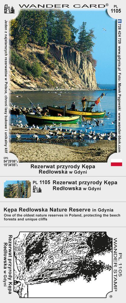 Rezerwat przyrody Kępa Redłowska w Gdyni