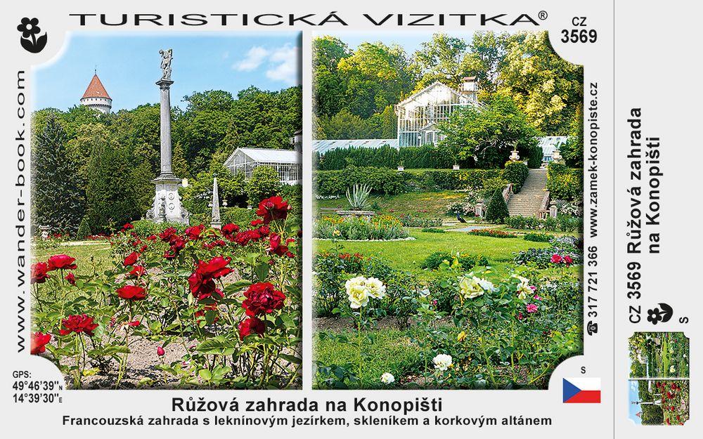 Růžová zahrada na Konopišti