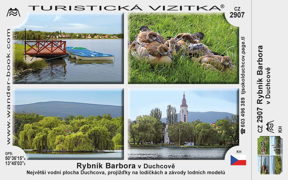 Rybník Barbora v Duchcově
