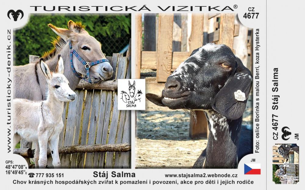 Stáj Salma