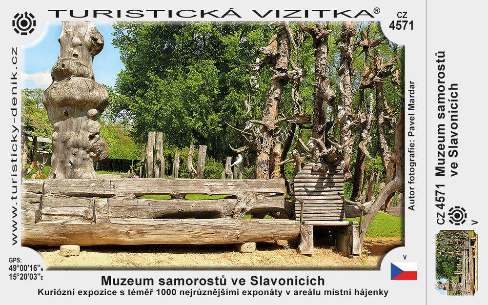 Slavonice muzeum samorostů