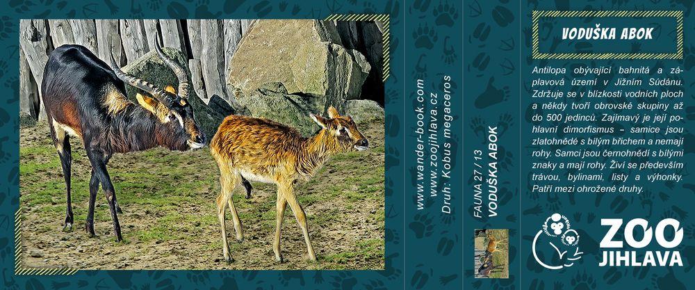 Voduška abok – Zoo Jihlava