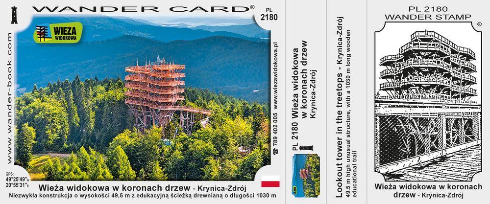Wieża widokowa w koronach drzew - Krynica-Zdrój